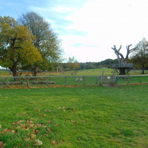 Community leading improvements at Slades Park