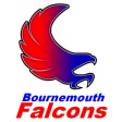 Bournemouth Falcons Volleyball Club