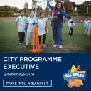 City Programme Executive Icon